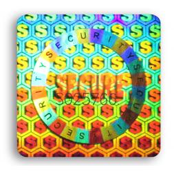 standard square tamper proof security hologram multi color en