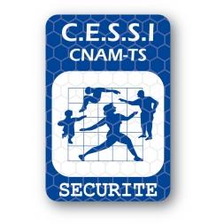custom tamper evident security seal cnam securite en
