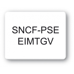 SBE Strong Tamper Proof Asset Tag, Black Print