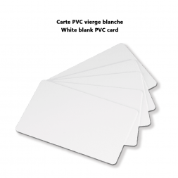 white blank pvc card visual