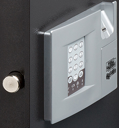 safe with biometric lock